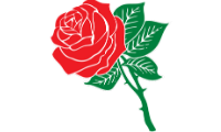 rose-hoa-hong.png